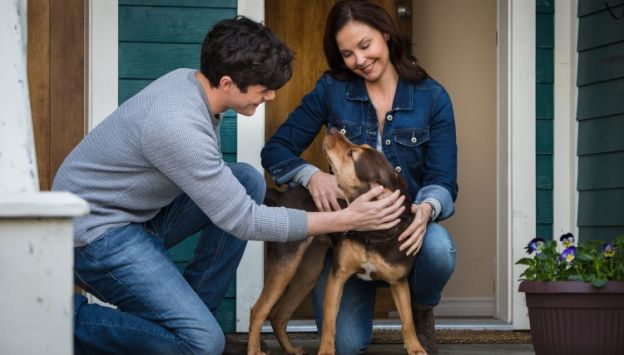 """Movie poster image for """"A DOG'S WAY HOME"""""""