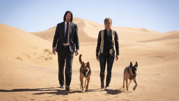 "Movie poster image for ""JOHN WICK: CHAPTER 3 - PARABELLUM"""