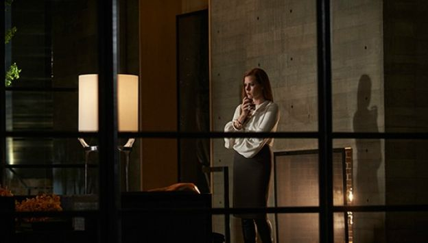 """Movie poster image for """"NOCTURNAL ANIMALS"""""""