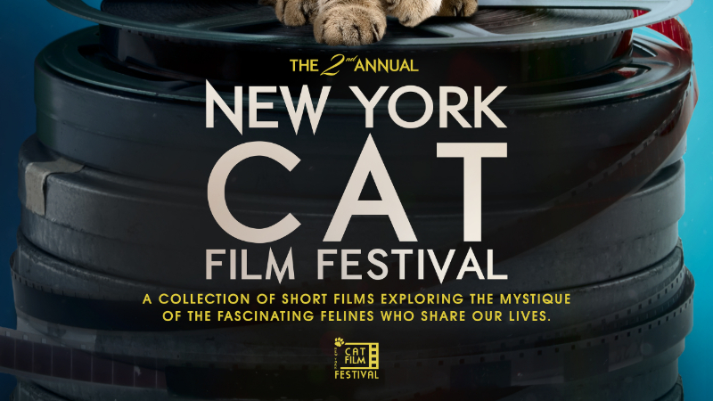 Movie poster image for NY CAT FILM FESTIVAL 2020