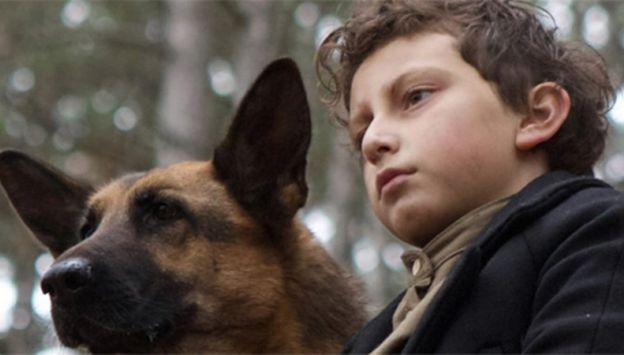 Movie poster image for SHEPHERD: THE STORY OF A JEWISH DOG