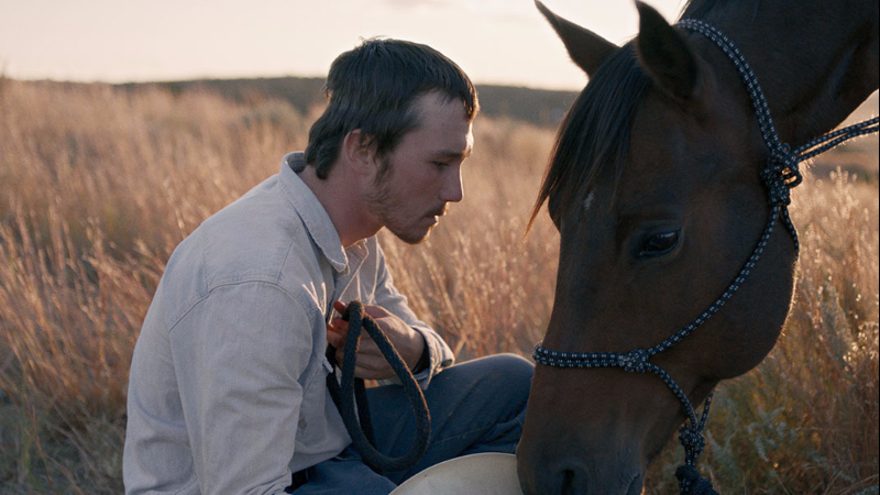 "Movie poster image for ""THE RIDER"""