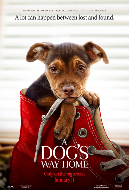"Movie poster image for ""A DOG'S WAY HOME"""