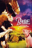 BABE - Flashback Family Films