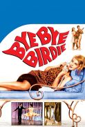 Movie poster image for BYE BYE BIRDIE