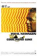 COOL HAND LUKE - 35MM