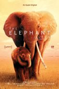 Poster of THE ELEPHANT QUEEN