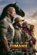 Poster of JUMANJI: THE NEXT LEVEL