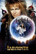 Movie poster image for LABYRINTH