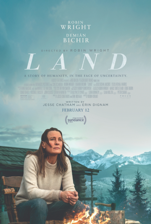 Movie poster image for LAND