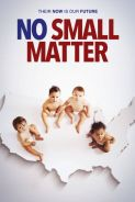 Poster of NO SMALL MATTER