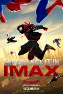 Poster of SPIDER-MAN: INTO THE SPIDER-VERSE in IMAX