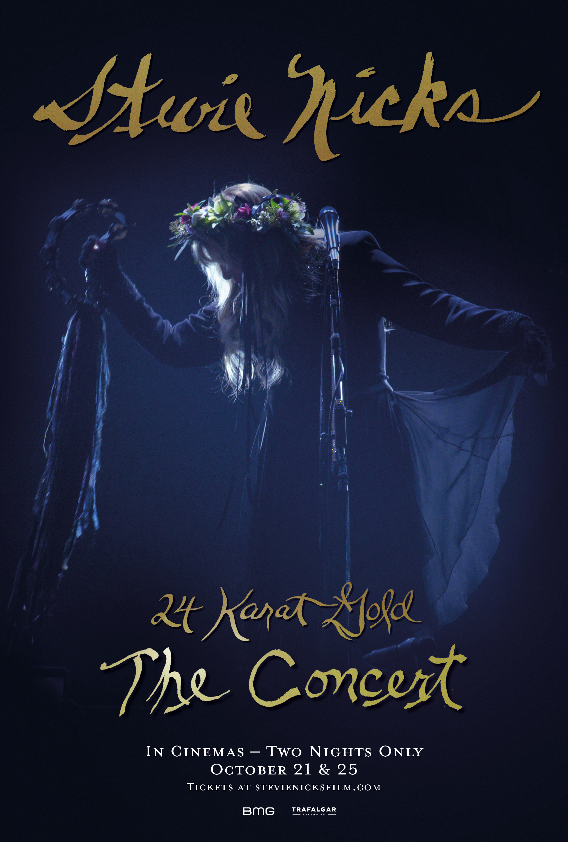 Movie poster image for STEVIE NICKS 24 KARAT GOLD THE CONCERT