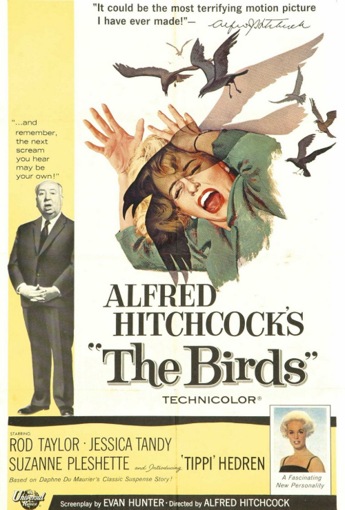 "Movie poster image for ""THE BIRDS - Hitchcocktober"""