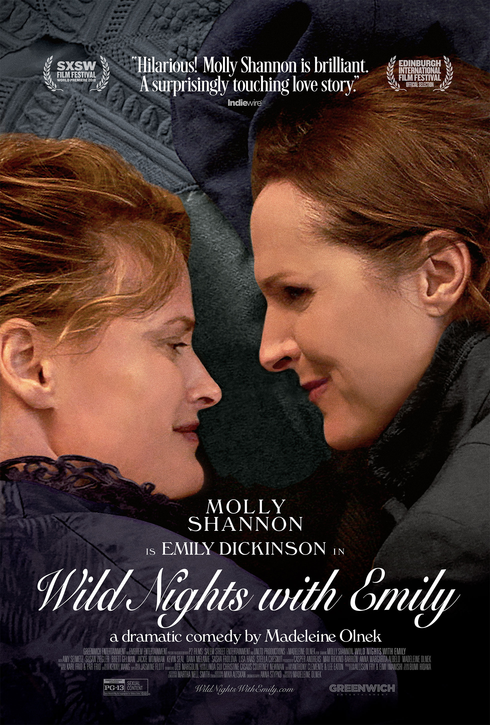 """Movie poster image for """"WILD NIGHTS WITH EMILY"""""""
